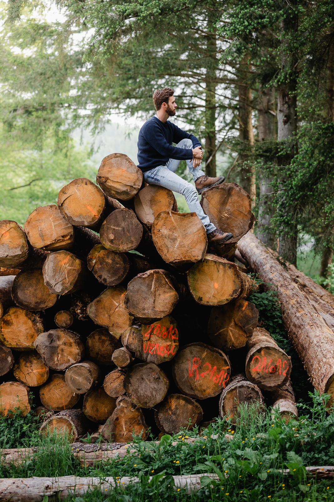 Guy with blue sweater sitting on top of tree logs