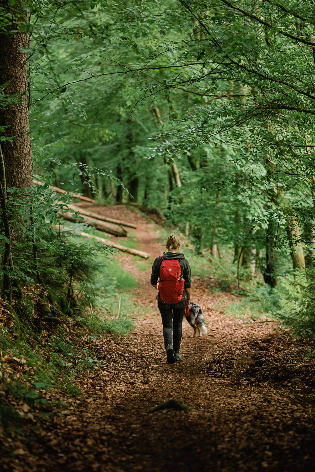 Girl with red backpack walking trough woods